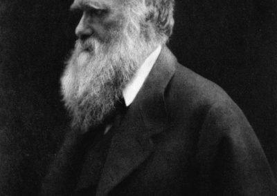 Legacy of Darwin